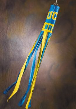 Ucla Bruins NCAA College Team Logo Wind Sock Blue & Yellow