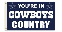 Dallas Cowboys NFL Logo 3' x 5' Flag w/Grommetts Blue & Silver