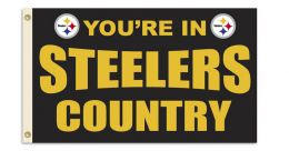 Pittsburgh Steelers 3' x 5' Flag w/Grommetts NFL Team Logo