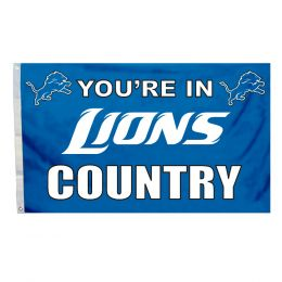 Detroit Lions 3' x 5' Flag w/Grommetts NFL Team Logo Blue & White