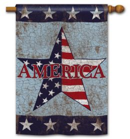 "America Patriotic Celebration Seasonal Garden and House Flag (Flag size: 28"" x 40"")"